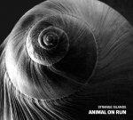 Strange Islands - Animal on Run, Ears&Wind Records 2016