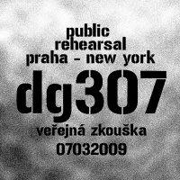 DG 307