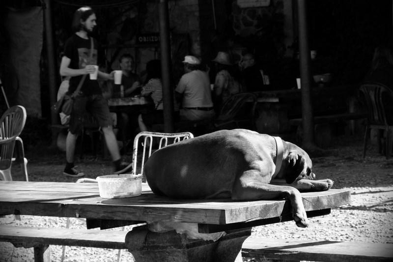 Večeře je na stole. Festival Napříč 2016, Meziříčko u Želetavy. Foto Maryen