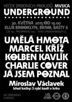 Spodní proudy 30. května 2015, Brno - Brooklyn